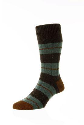 Picture of Stripe Bayfield Socks - Short