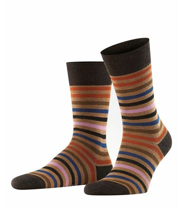 Picture of Socks Tinted Stripe Short
