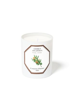 Picture of Cedar Scented Candles - 185G
