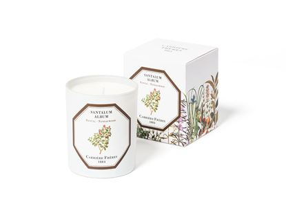 Picture of Sandalwood Scented Candles - 185G